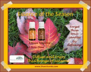 Essence of the Season