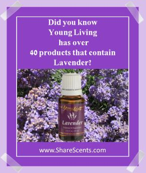 Lavender in 40 products