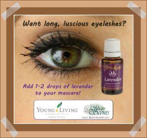 Eyelashes lavender